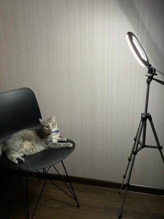 Кольцевая LED лампа 26 см +ПОДАРОК штатив на выбор (макс высота 210 см, макс выс. Киев, Киевская область. фото 8