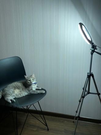 Кольцевая LED лампа 26 см +ПОДАРОК штатив на выбор (макс высота 210 см, макс выс. Киев, Киевская область. фото 7
