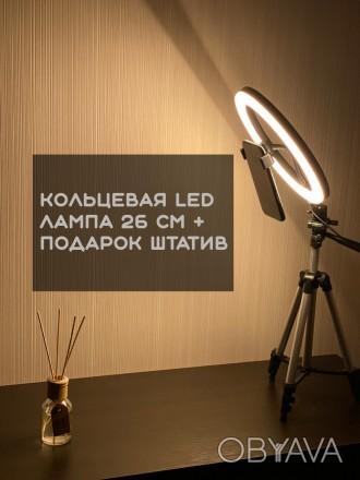 Кольцевая LED лампа 26 см +ПОДАРОК штатив на выбор (макс высота 210 см, макс выс. Киев, Киевская область. фото 1