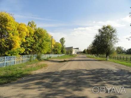 Продам земельный участок в с.Сурско-Михайловка
