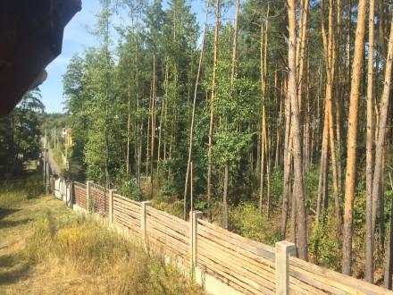 Новый дом в лесу. С. Пряжево Житомирского района. 8 км от Житомира. Асфальтир. Пряжево, Житомирская область. фото 8