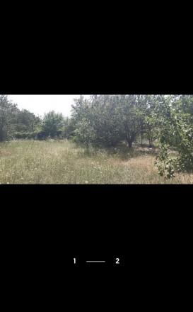 Участок ограждён  Что есть рядом: - густой красивый лес - до остановки 5 минут,. ЗАЗ, Чернигов, Черниговская область. фото 2
