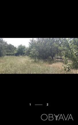 Участок ограждён  Что есть рядом: - густой красивый лес - до остановки 5 минут,. ЗАЗ, Чернигов, Черниговская область. фото 1