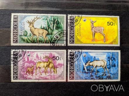 """Набор марок. """"Фауна"""".""""Животные. Благородный олень"""". Монголия. Набор состоит из . Запорожье, Запорожская область. фото 1"""