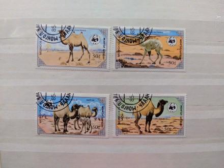 """Набор марок. """"Фауна"""".""""Животные. Верблюд"""". Монголия. Набор состоит из 4 марок. . Запорожье, Запорожская область. фото 1"""