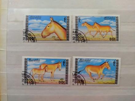 """Набор марок. """"Фауна"""".""""Животные. Лошади"""". Монголия. Набор состоит из 4 марок. Г. Запорожье, Запорожская область. фото 1"""