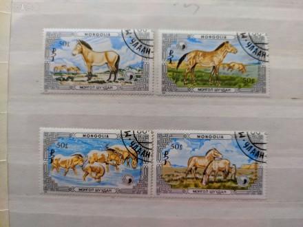 """Набор марок. """"Фауна"""".""""Животные. Дикие лошади"""". Монголия. Набор состоит из 4 мар. Запорожье, Запорожская область. фото 1"""