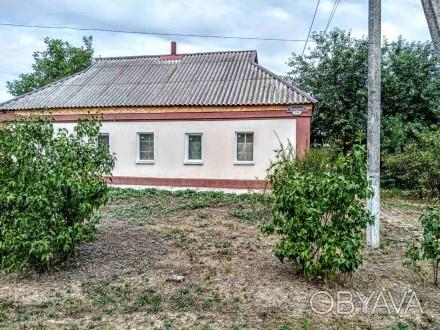 Продам дом - усадьбу в Петриковке