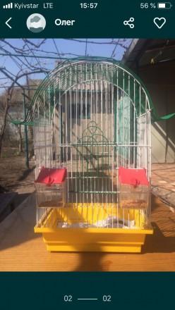 Продам клетку для птиц высота 45 ширина25 жёрдочки отсутствуют прошу писать Вайб. Одесса, Одесская область. фото 3