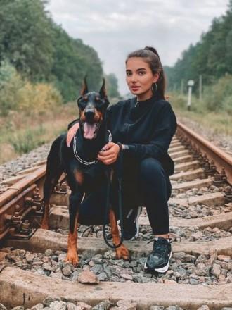 Продаются щенки добермана.   На каждого оформлен ветеринарный паспорт.  Щенка. Житомир, Житомирская область. фото 8