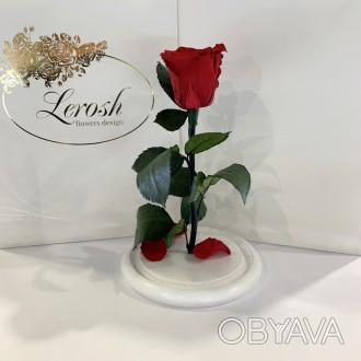 Діаметр бутона троянди 6-7 см  Розмір композиції 16*16*27 см  Колір підставк. Киев, Киевская область. фото 1