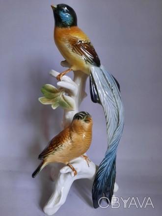 Две райские птицы, Karl Ens, Германия .