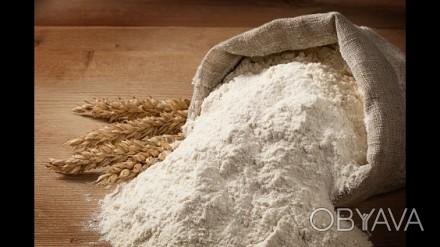 Купить муку оптом. Мука ржаная, пшеничная мука