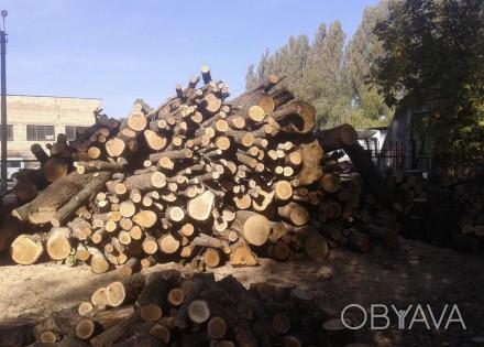 Продам дрова дуб 1 куб 400 грн