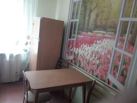 Уютная однокомнатная квартира. 2 этаж 9эт.дома..В квартире все удобства: мебель,. Одесса, Одесская область. фото 4