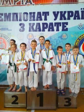 Представительство Международной федерации каратэ Сито-рю Хаяси-Ха, представитель. Киев, Киевская область. фото 3