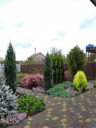 Спроектируем структуру Вашего сада, дачи, усадьбы, придомовой территории, сплани. Кривий Ріг, Днепропетровская область. фото 10