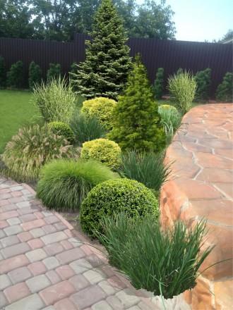 Спроектируем структуру Вашего сада, дачи, усадьбы, придомовой территории, сплани. Кривий Ріг, Днепропетровская область. фото 11